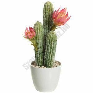 Kaktuszvirág illatolaj