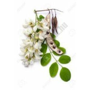 akác virág illatolaj